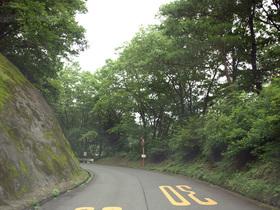 美の山公園に向かう山道