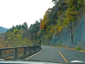 紅葉の奥多摩湖周遊道路
