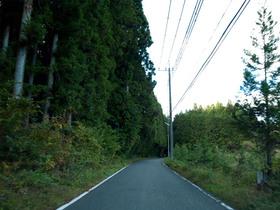 栃木県道245号線