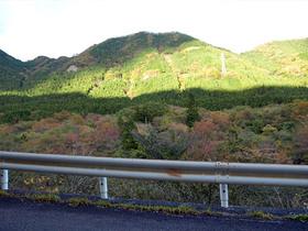 ロードサイドの紅葉風景
