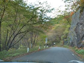 秋の県道245号線