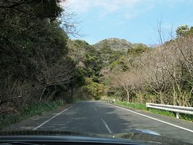 鋸山駐車場に向かう山道