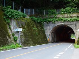 国道462号神流湖付近のトンネルを出たところ