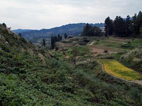 傾斜地に作られた田んぼ