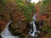 紅葉の竜頭ノ滝