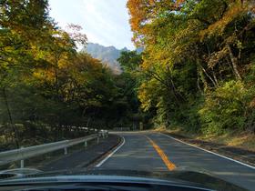 紅葉の上毛三山パノラマ街道