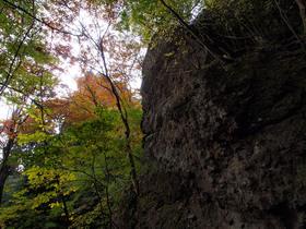 山道から周囲の風景