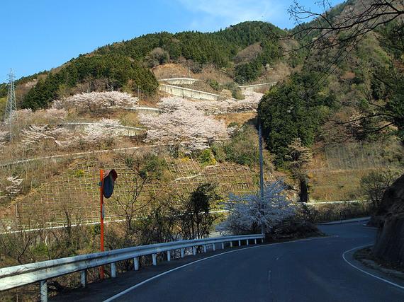浦山ダムに続くクネクネ道
