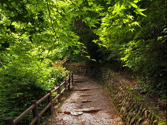 払沢の滝 遊歩道