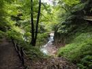 七ツ釜五段の滝付近の遊歩道