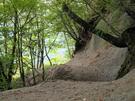 砂地で歩きやすい旧森林軌道