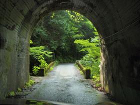 しっとりしたトンネル