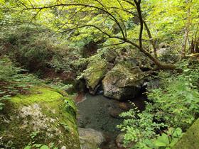 林道下は渓谷