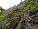 岩を見上げると林道が横切っている