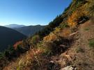 登山道をスタート