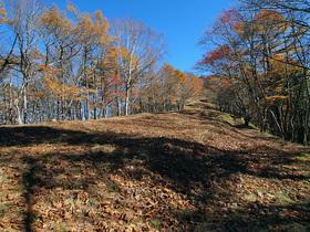 鷹ノ巣山避難小屋から鷹ノ巣山山頂方面の登山道