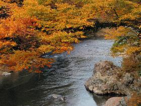 楓橋から多摩川を望む