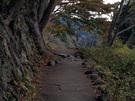 軍畑駅方面に向かう御岳渓谷遊歩道