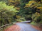 日の出山登山口(柿平園地)の林道御岳線