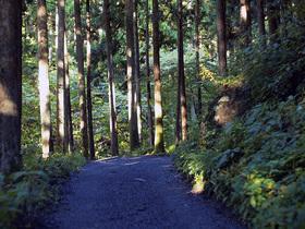 林道御岳線