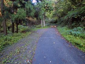林道御岳線の行き止まり地点(駐車スペース)