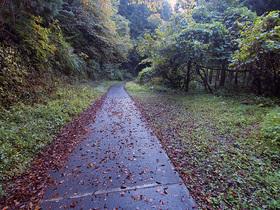 林道御岳線の行き止まり箇所から通行してきた道の様子