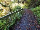 林道御岳線の終点に山道入り口