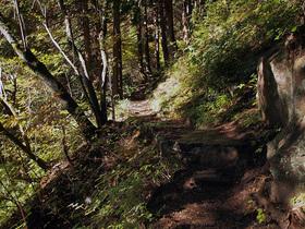 七代の滝に向かう山道