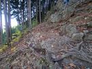 惣岳山山頂手前の急登箇所