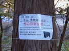 熊の目撃情報