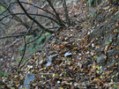 登山口付近の山道