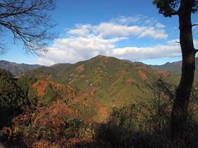 峠の茶屋駐車場から大岳山の眺望