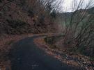 浅間林道 その2