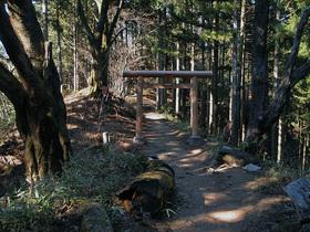 日の出山から武蔵御嶽神社へ向かう山道