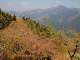 浅間嶺展望台からの眺望