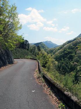 静かな浅間林道