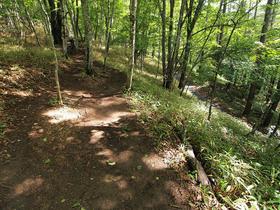 林道沿いの登山道