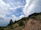 晴天の大菩薩嶺山道