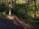 岩魚沢林道と河内沢沿い登山道の分岐地点
