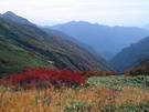 平標山ノ家付近の風景