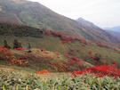 平標山ノ家付近の風景2