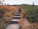 平標山に延びる木の階段
