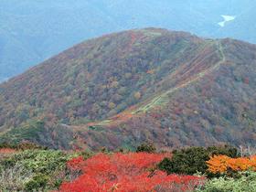 松手山コースから松手山を望む