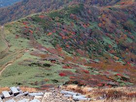 色とりどりの松手山コース
