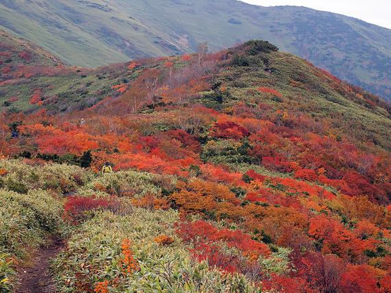 紅葉の松手山コース