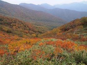 松手山からの眺望
