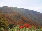 松手山コースからの風景