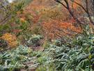 急坂の松手山コース