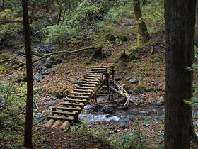 手書きの道標に従って、左に進むと現れる木橋