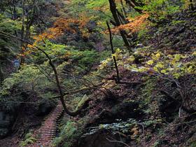 大丹波川沿いの山道3